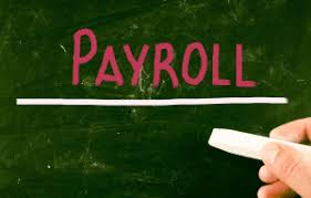 Payroll Automation Course